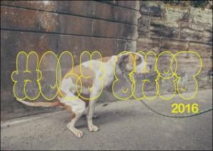 151118_dog_01